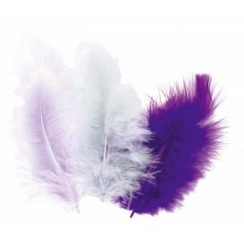 50 plumes d'oiseaux camaieu violet