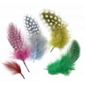 50 plumes d'oiseaux multicolore