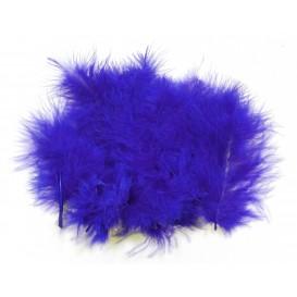20 plumes d'oiseaux bleu roi