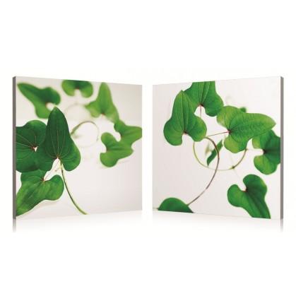 tableau numérique diptyque feuilles vertes