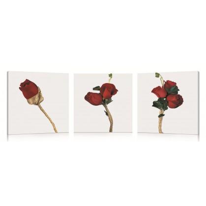 tableau numérique triptyque rose rouges
