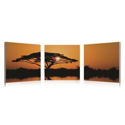tableau numérique triptyque paysage d'afrique