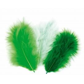 plumes oiseau de paradi vertes