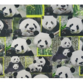 tissu popeline impression digitale pandas largeur 145cm x 50cm