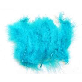20 plumes d'oiseaux turquoise