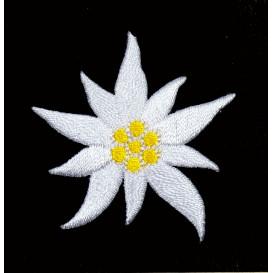 écusson fleur edelweiss thermocollant