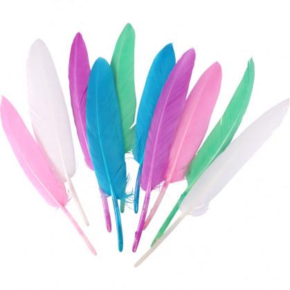 120 plumes indiennes pastel