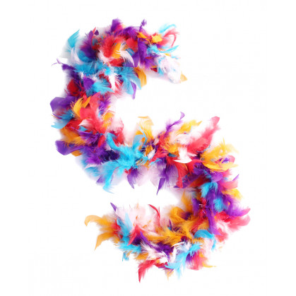 boa en plumes multicolore 1m 20grs