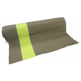 tissu toile transat taupe/anis largeur 44cm x 50cm