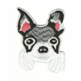 écusson chien chihuahua thermocollant