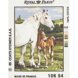 kit canevas chevaux