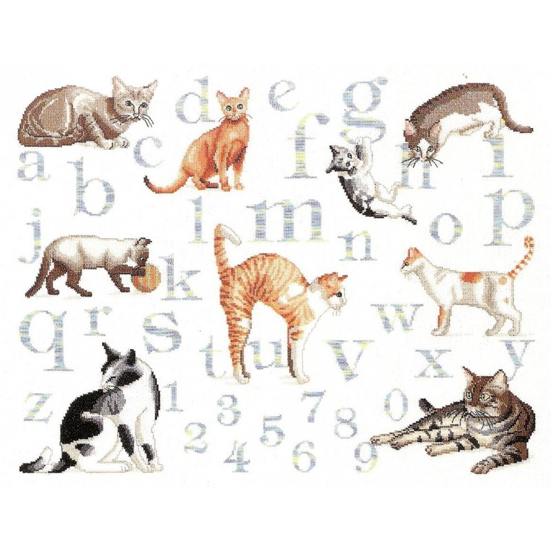 Kit broderie points compt s abcd chats 35x45cm - Broderie point de tige ...